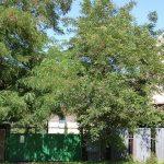 hostovce-obec-a-okolie (32)